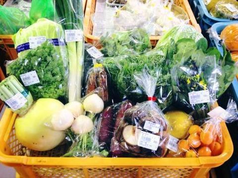 道の駅の野菜は新鮮