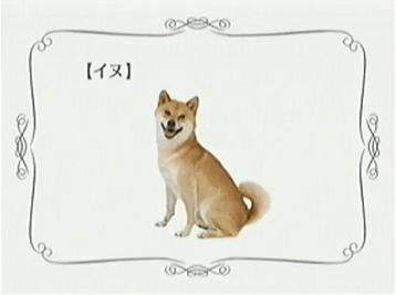 あきかん_イヌ
