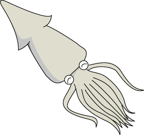 squid_a09.png