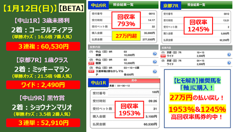 112【BETA】的中画像