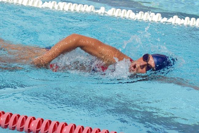 swimmer-625561_960_720