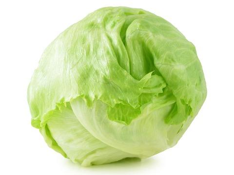 lettuce_main-e1558005415406