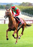 ジャパンCに凱旋門賞4着のヴァルトガイストなど28頭の外国馬が予備登録