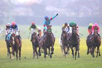 【有馬記念】障害王オジュウチョウサンの挑戦は9着に終わる武豊「4コーナーの走りは乗っていて感動した」