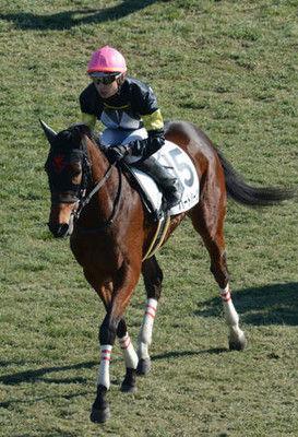 競走距離錯誤の山田騎手が復帰「罵声なくよかった」