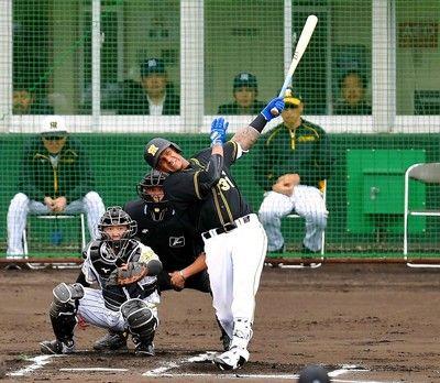 阪神2度目紅白戦、マルテが初本塁打など打線が好調