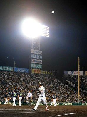 阪神、33日ぶり甲子園で勝てず…九回サヨナラ好機も、大山痛恨ポップフライ