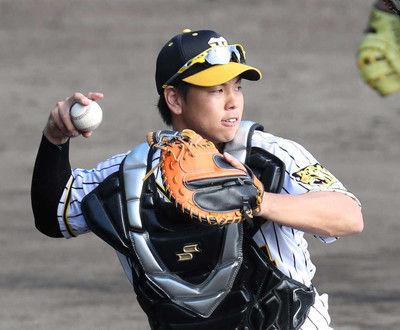ゴールデン・グラブ賞発表、セは阪神・梅野など4ポジションが初受賞