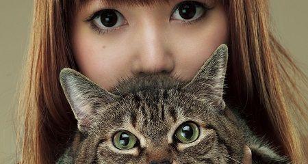 中川翔子 マミタス 猫 死去 葬式 お別れ会 有料 金儲け 批判に関連した画像-01