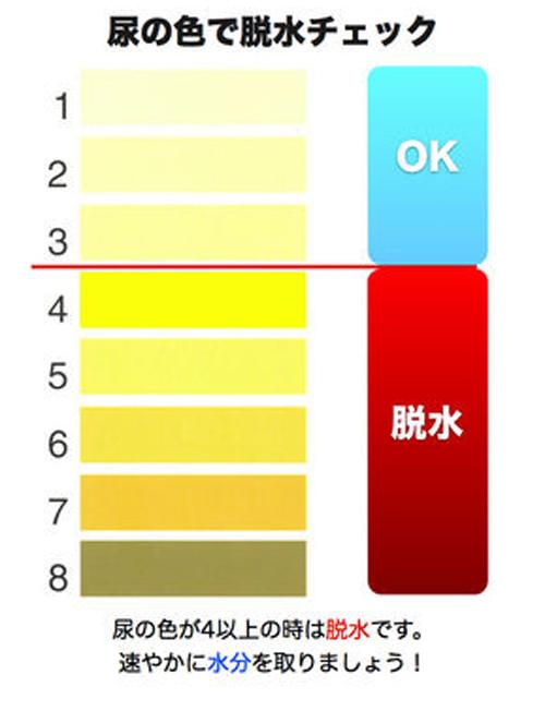 脫水狀態もわかる。尿の色で健康狀態をチェックする尿色診斷表 : カラパイア