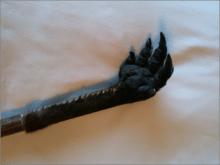 京井良彦の「3分間ビジネス・スクール」-kangaroo magonote
