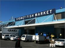 京井良彦の「3分間ビジネス・スクール」-fish market
