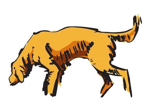 捨てられた犬、100kmも旅をしてオーナーに噛みつく