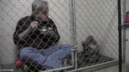 獣医がケージの中で犬と食事04