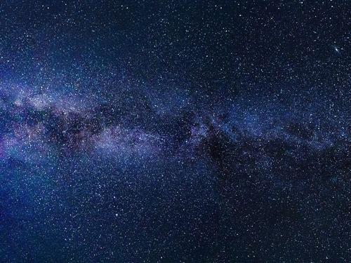 夜空に輝く星空のようなオウム