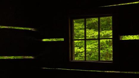 130227緑の中の古き良き時代@アメリカ テネシー州