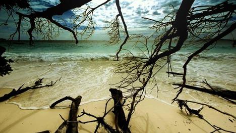 130213シミラン諸島の浜辺@タイ
