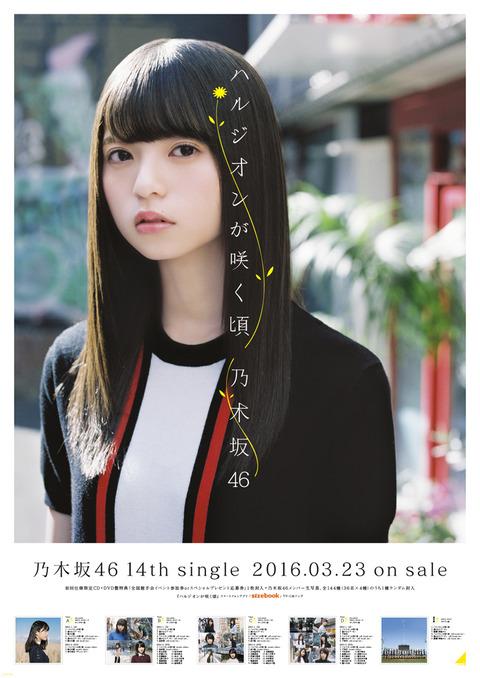 N46_B2_asuka