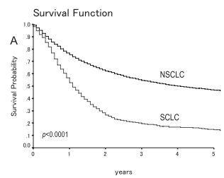 お醫者になるのは,大変ですね : 肺癌になったら,どれくらい生きられるのか?-3) 予後
