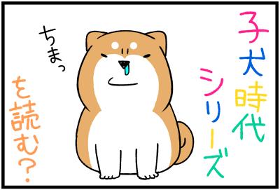 子犬シリーズ
