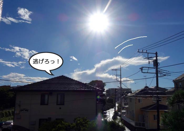 19日ブログ1