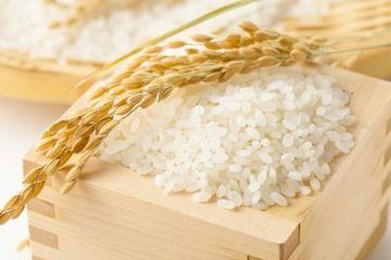 GACKT「米は20年食べてない」仰天告白に驚きの声