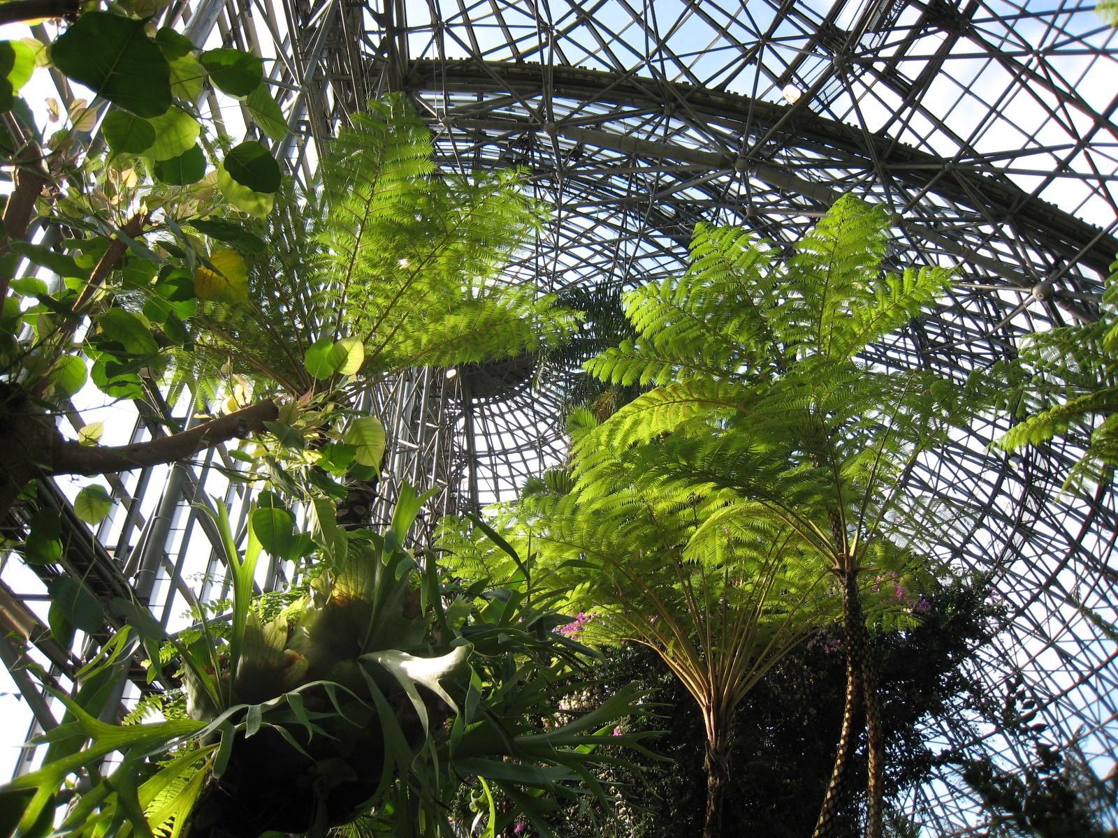 放浪記:植物園とオープンハウス。