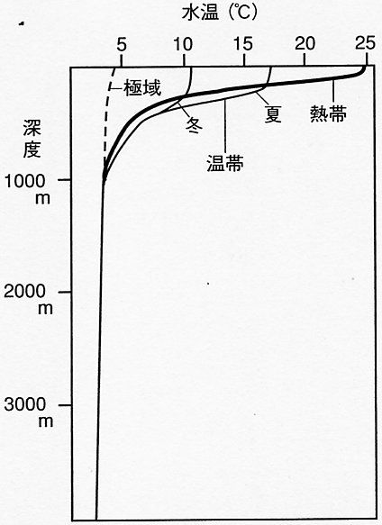 深海魚リュウグウノツカイが定置網にかかるのは,海底に異変で,地震の予兆?--いいえ。地震とは無 ...