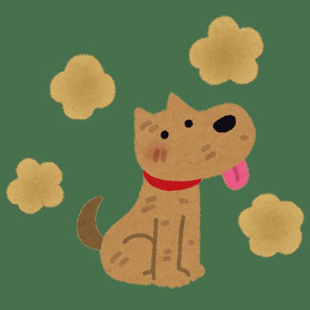 pet_dog_nioi