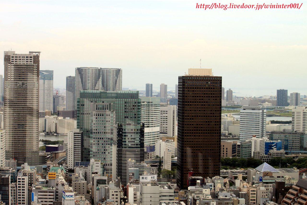 TDRな生活(-_-).。oOO : 東京タワーの上から無理矢理見た東京 ...