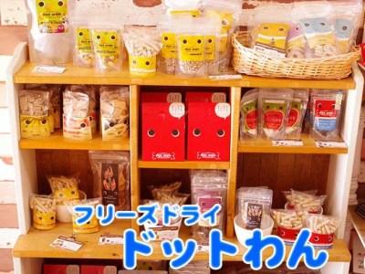 【新商品】国産食材使用!フリーズドライのドットわんのおやつ入荷しました!
