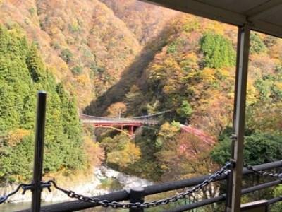 宇奈月トロッコ電車に乗って紅葉を見てきました