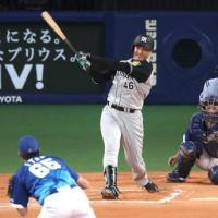 【朗報】阪神タイガースの主砲、ついに発見される