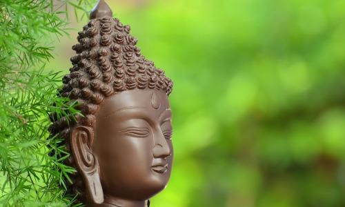 Divine knowledge from Lakshmi Puja?