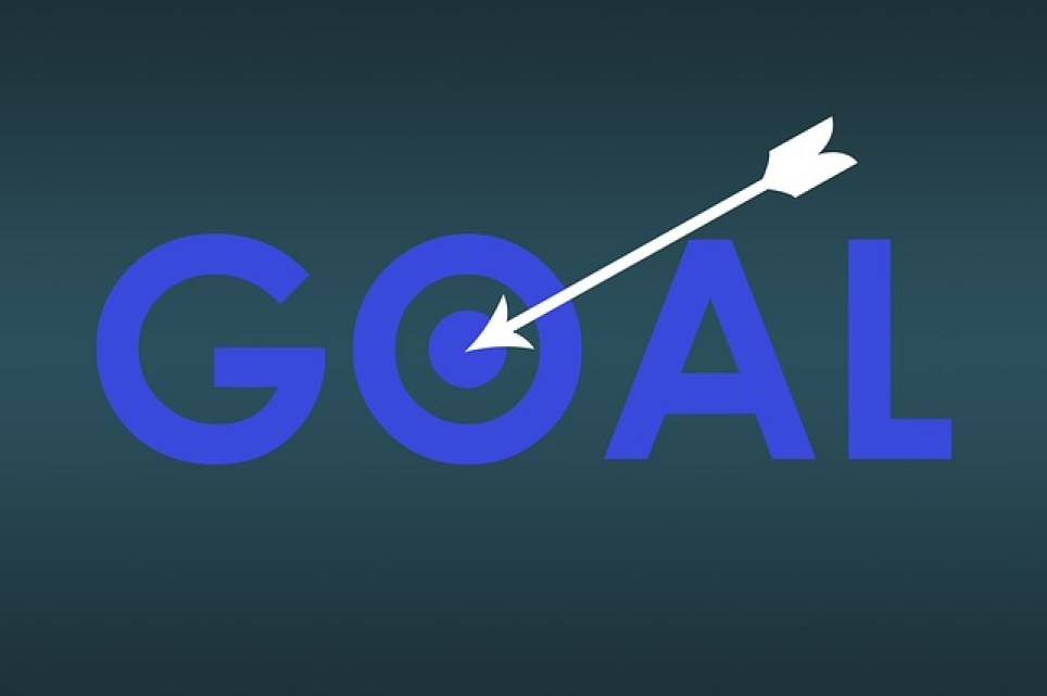 Your goal in life
