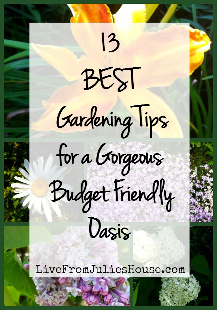 Are you itching to get out and get your hands dirty? Check out my 13 Best Gardening Tips for a gorgeous budget friendly oasis