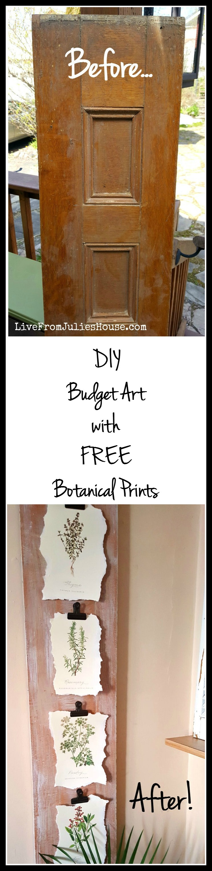 DIY Budget Art with FREE Botanical Prints - Looking for inexpensive art? See how I made my DIY Budget Friendly Art with these terrific FREE botanical prints using a $1 ReStore find.
