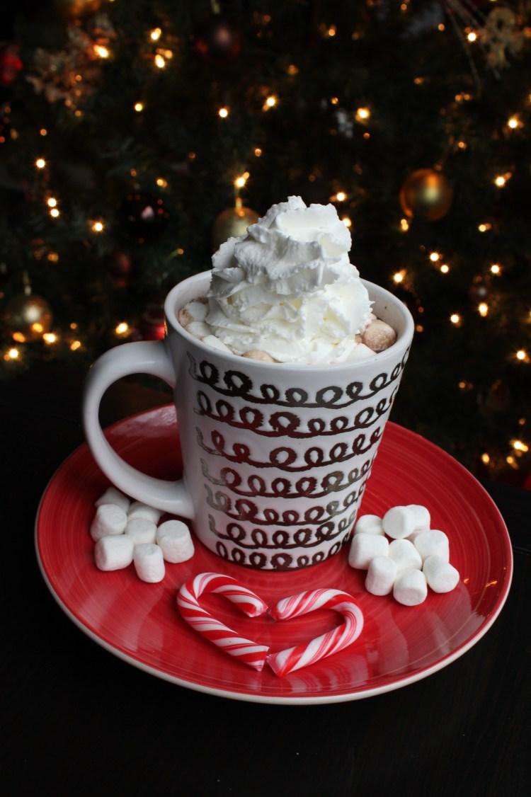 Whipped cream hot cocoa - Edited