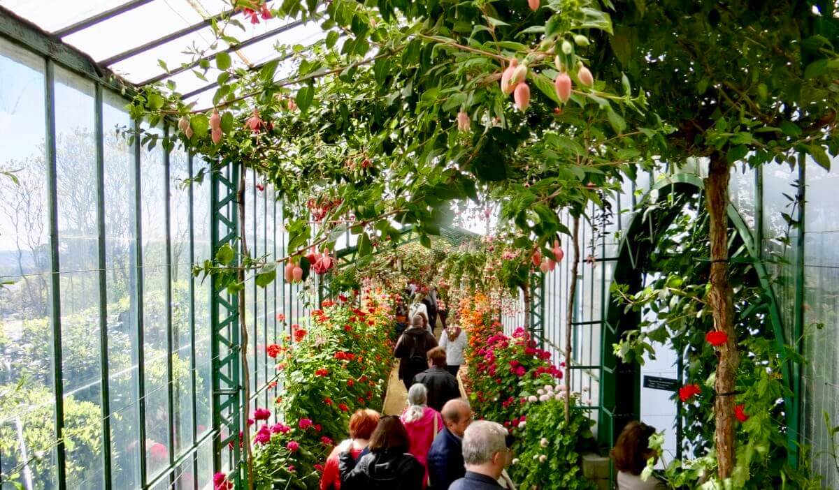 Botanische Serre Ultimate Guide To Royal Greenhouses Of Laeken 2020 Live In Belgium