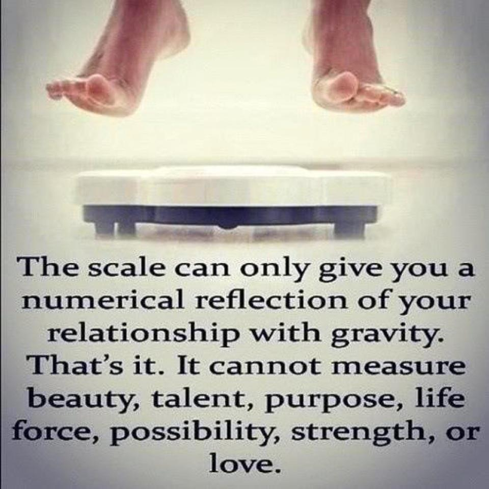 The Vortex of a Scale's Unmoving Numbers