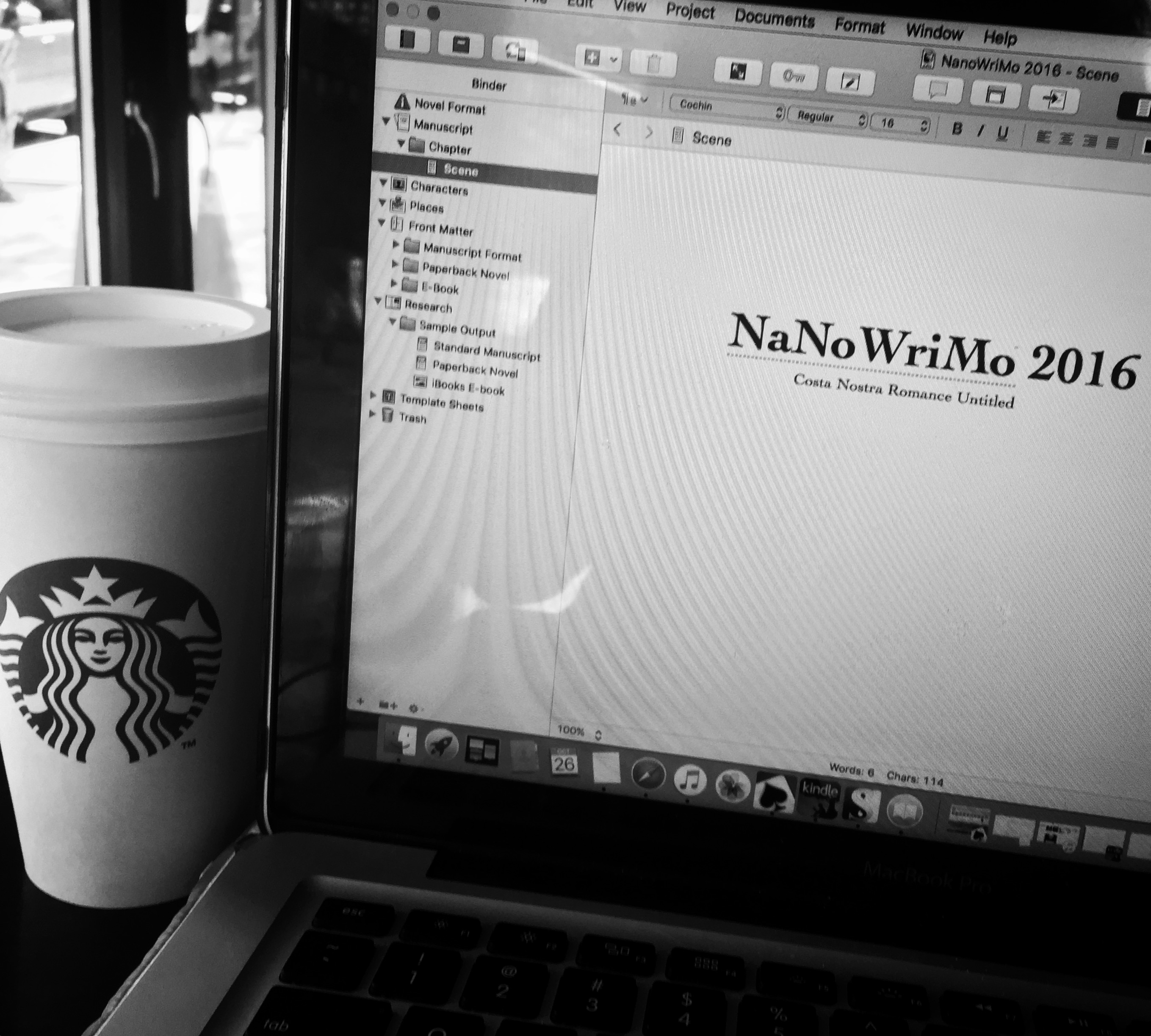NaNoWriMo 2016 in the Books (Literally)