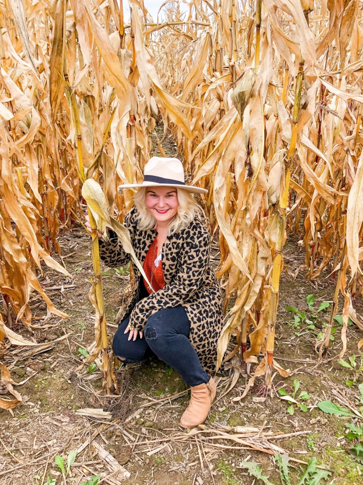 Wanderlusting: Fall Farm Fun at Sherman Farms