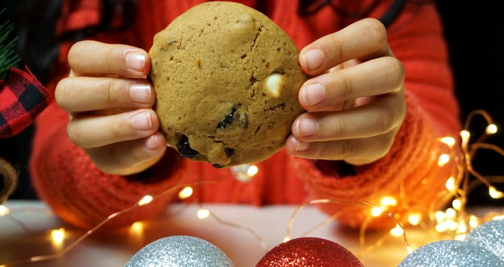 hands holding cranberry cookie