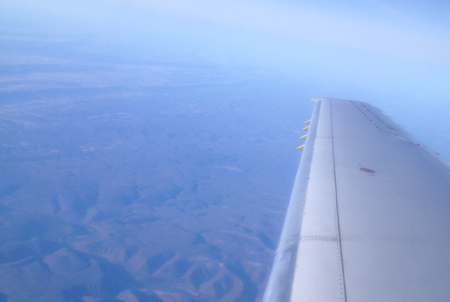 planes wing