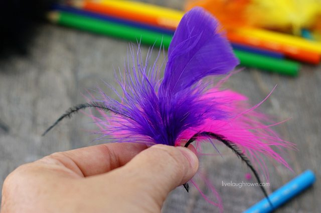 Start by deciding on what feather you want to attach to your pencil.