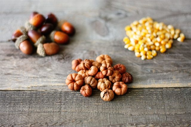 Dried goods and vase fillers used for DIY Fall Decor