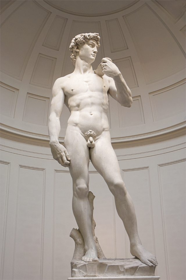 Michelangelo's Statue of David at the Accademia in Florence, Italy.  #florence #italy