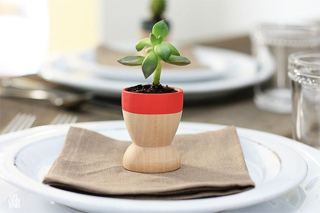 Adorable succulent planters! Easy and make lovely gift or favors. Tutorial at livelaughrowe.com