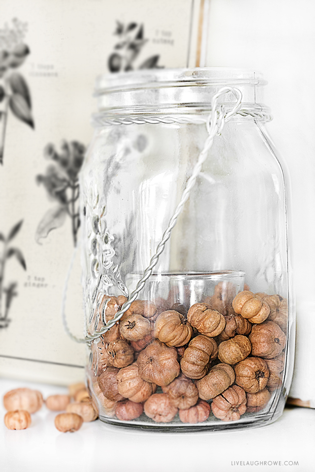 Putka pods used as a vase filler around a votive holder is an all-time favorite! Swing by to check out the Pumpkin Spice Printable too. livelaughrowe.com