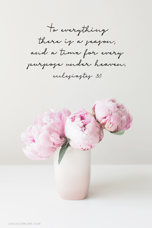 """""""To everything there is a season, and a time for every purpose under heaven."""" Ecclesiastes 3:1"""